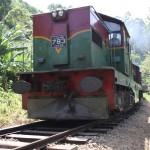 Beliebtes Transportmittel in Sri Lanka - Der Zug