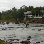 Sehenswürdigkeiten in Kandy