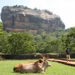 Sigiriya - Bestandteil des kulturellen Dreiecks