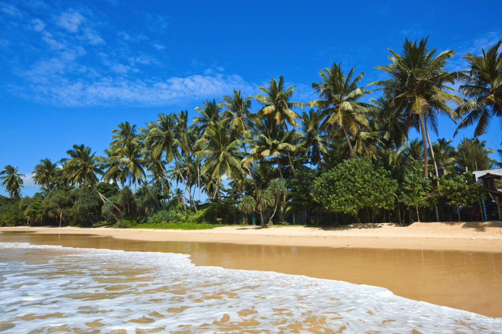 Sri Lanka hat viele traumhäfte Strände zu bieten